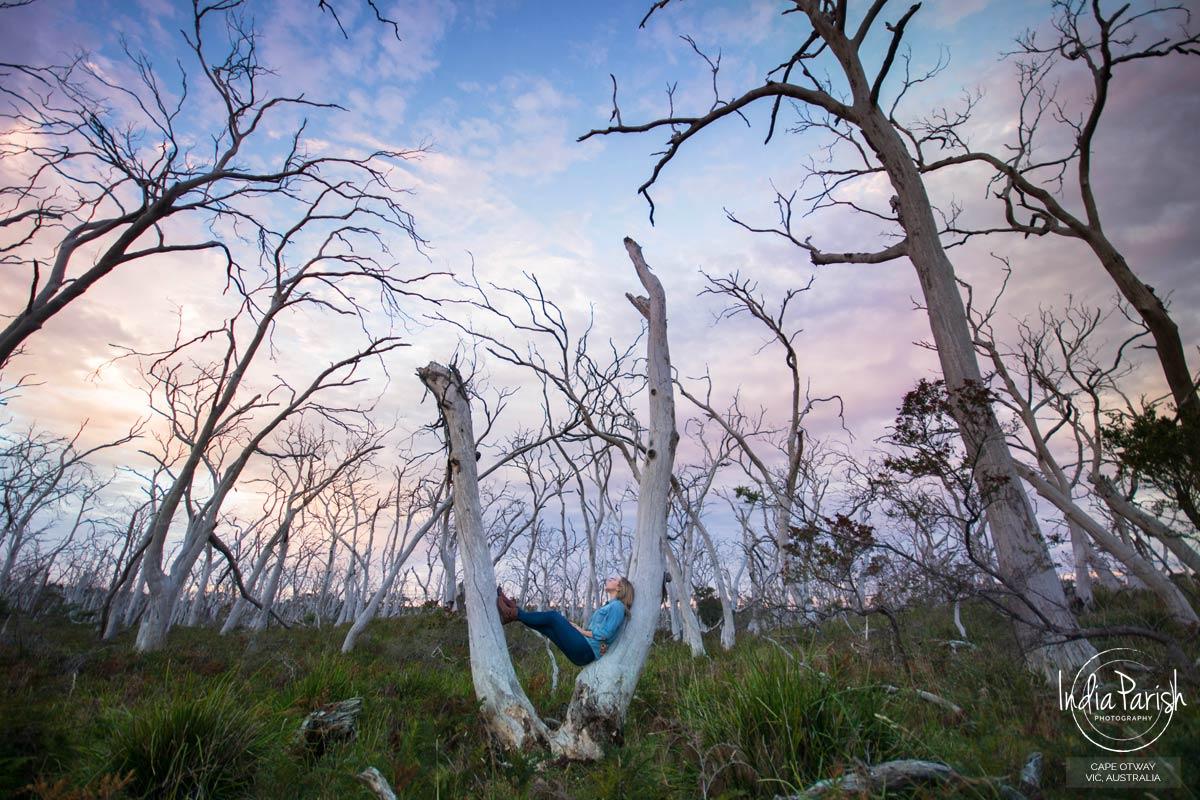 CAPE OTWAY NATIONAL PARK, VIC, AUSTRALIA
