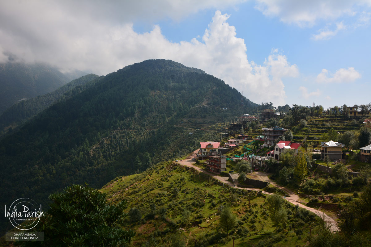 DHARAMSALA, NORTHERN INDIA
